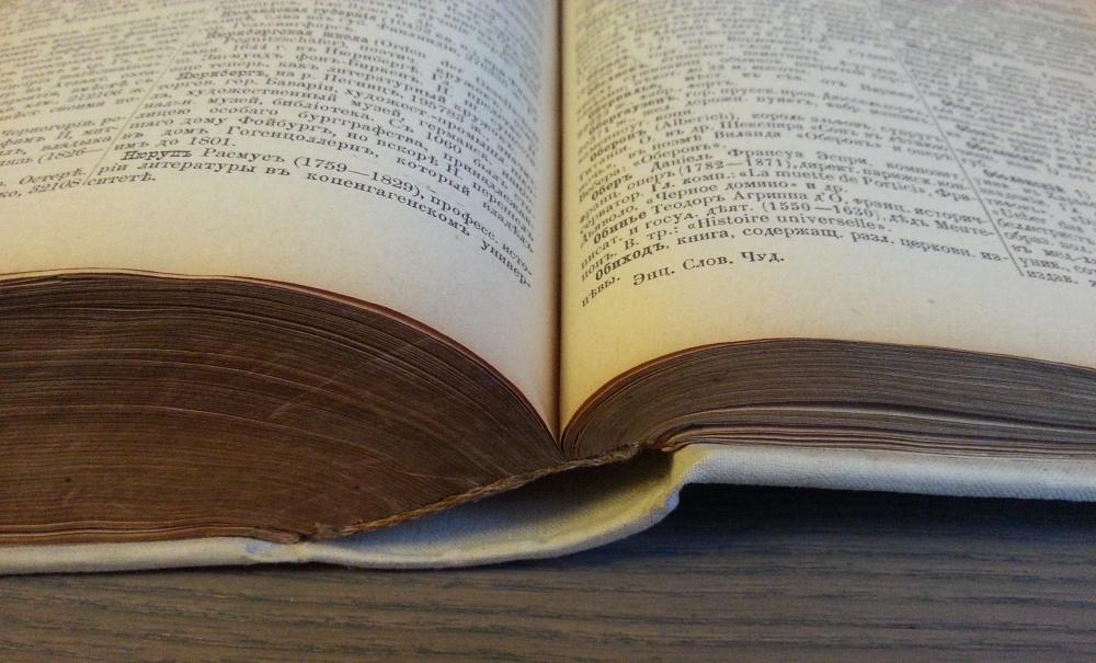 Справочный общедоступный энциклопедический словарь Чудинова